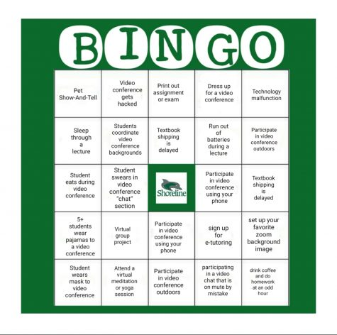 Bingo: Online Learning Edition