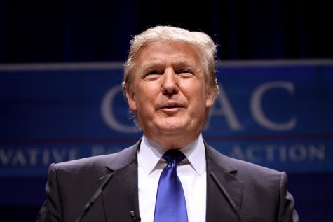 Donald Trump's claims have been thus far unable to gain any traction.