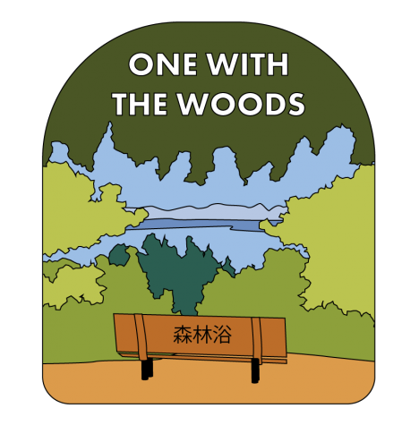One with the Woods: An Introduction to Forest Bathing